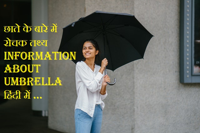 About Umbrella In Hindi