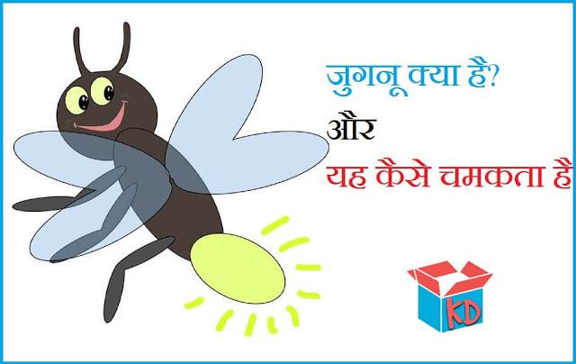 Firefly In hindi