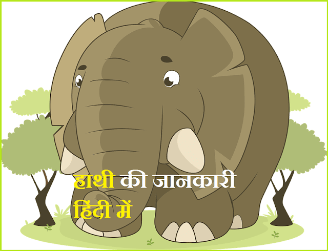 information about elephant in hindi
