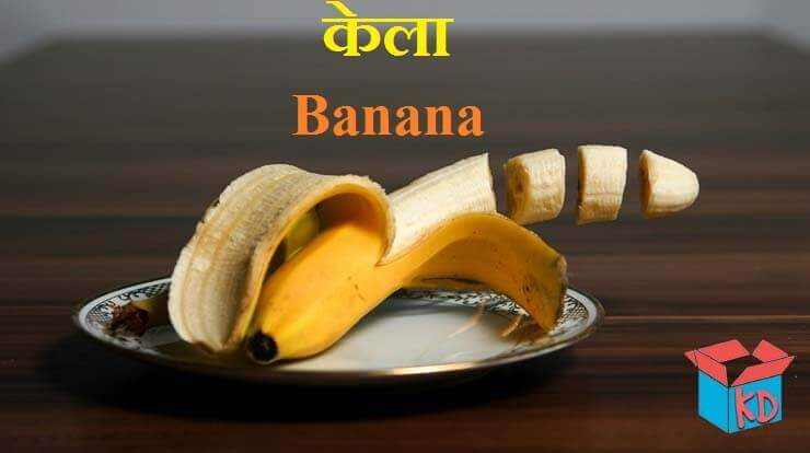 Information About Banana In Hindi