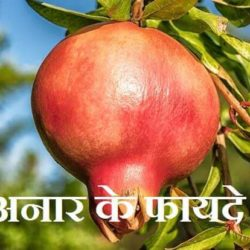 Benefit Of Pomegranate In Hindi
