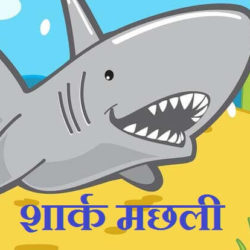Information About Shark In Hindi