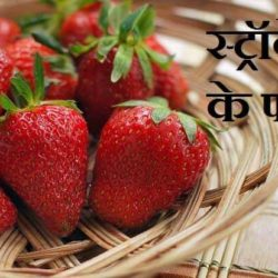 Strawberry Benefits In Hindi