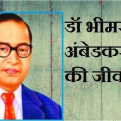 Dr Bhimrao Ambedkar In Hindi