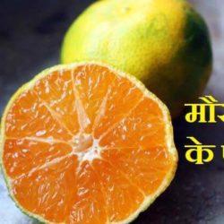 Mosambi Juice Benefits In Hindi
