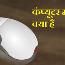 What Is Mouse In Hindi