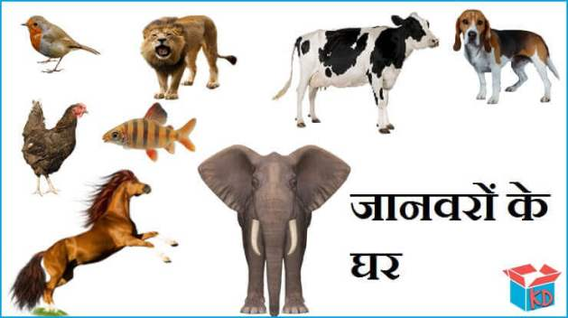 animals and their homes in hindi