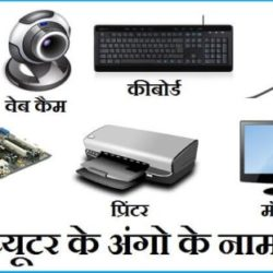 Computer Parts Name In Hindi