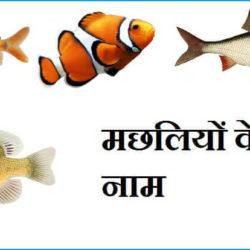 Fish Names In Hindi