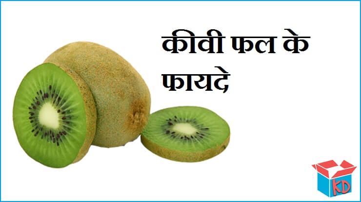 Kiwi Fruit In Hindi