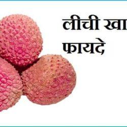 Litchi Fruit In Hindi