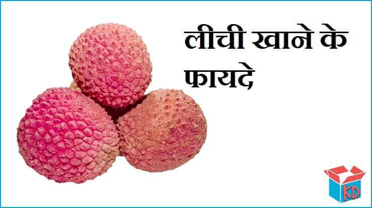 Litchi Fruit In Hindi