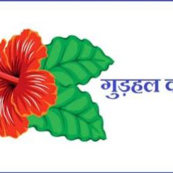 Hibiscus Flower Information In Hindi