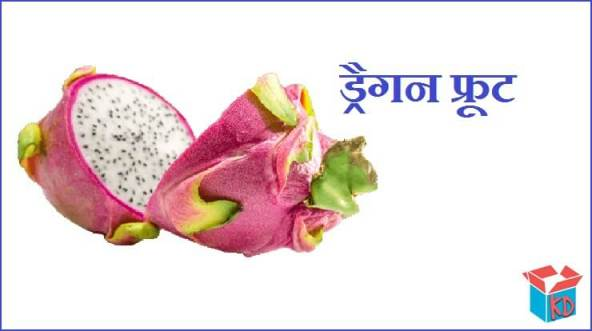 Dragon Fruit In Hindi