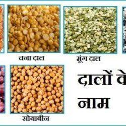 Pulses Name In Hindi
