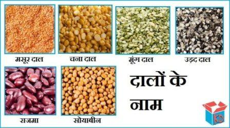 Pulses Name In Hindi