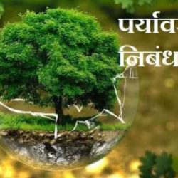 Essay On Environment In Hindi