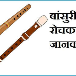 Information About Flute In Hindi