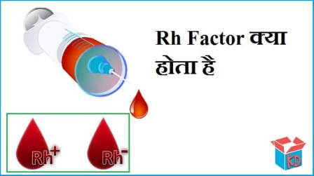 What Is Rh Factor In Hindi