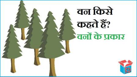 Types Of Forest In Hindi